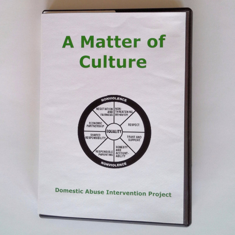 In-Our-Best-Interest-Working-With-Battered-Women-A-Matter-of-Culture-DVD