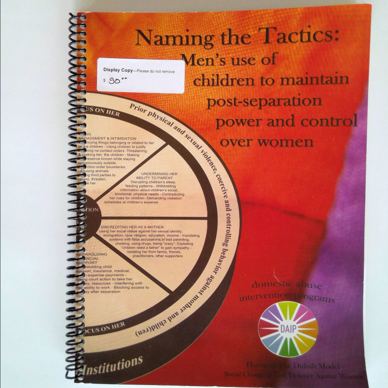 Naming the Tactics: Men's use of children in maintaining post-separation  power and control over women